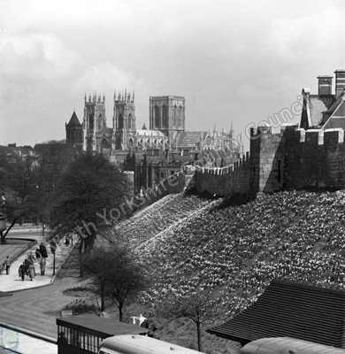 York Minster, City Walls